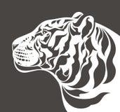 Silueta blanca del tigre Imagen de archivo libre de regalías