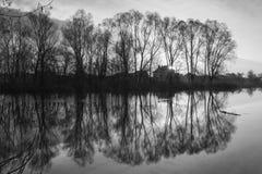 Silueta blanco y negro del árbol en tiempo de la salida del sol imagenes de archivo