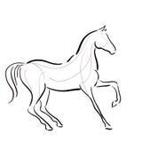 Silueta blanco y negro del ` s del caballo ilustración del vector