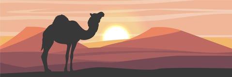 Silueta Camello de One-humped en el desierto con las dunas de arena libre illustration