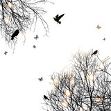 Silueta de árboles y de pájaros