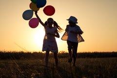 Silueta de dos niños felices que juegan en el campo en t Fotografía de archivo