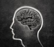Silueta de la cara con un cerebro adentro stock de ilustración