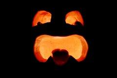 Silueta de la cara de la linterna del o de Gato Foto de archivo