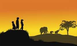 Silueta de la comadreja y del elefante Fotos de archivo