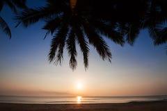 Silueta de la cuesta del árbol de coco abajo a la playa en el fondo de la salida del sol, provincia de Chumporn Fotografía de archivo libre de regalías