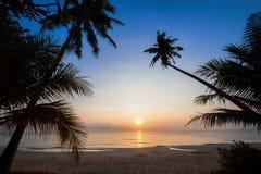 Silueta de la cuesta del árbol de coco abajo a la playa en el fondo de la salida del sol, provincia de Chumporn Fotografía de archivo