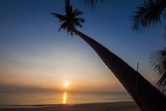 Silueta de la cuesta del árbol de coco abajo a la playa en el fondo de la salida del sol, provincia de Chumporn Fotos de archivo
