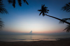 Silueta de la cuesta del árbol de coco abajo a la playa en vagos de la salida del sol Imagen de archivo libre de regalías