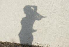 Silueta de la figura de la mujer en fondo natural de la pared Las mujeres figuran en una pared, foto artística Contraste, silueta fotos de archivo libres de regalías