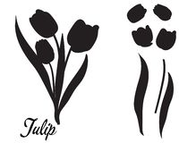 Silueta de la flor del tulipán Ramo de tulipanes libre illustration