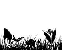 Silueta de la hierba Fotos de archivo libres de regalías