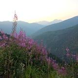 Silueta de la montaña Imagen de archivo libre de regalías