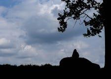 Silueta de la muchacha y del coche contra el cielo dramático Fotografía de archivo libre de regalías