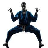 Silueta de la mujer de los artes marciales del vietvodao del karate Foto de archivo