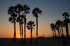 Silueta de la palmera en Santa Monica Beach Fotos de archivo
