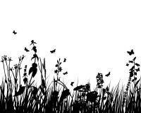 Silueta de la planta de los prados Imagenes de archivo