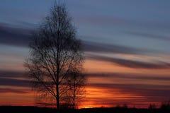 Silueta de la puesta del sol Fotografía de archivo