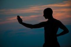 Silueta de la puesta del sol del hombre que practica artes marciales Foto de archivo libre de regalías
