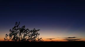 Silueta de la puesta del sol de los marismas Imagen de archivo