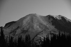 Silueta de la salida del sol: Mt Rainier Head Shot Grey Tones, soporte Rainier National Park Imagen de archivo