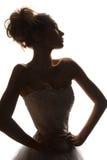 Silueta de las novias de la moda Fotografía de archivo libre de regalías