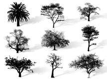 Silueta de los árboles stock de ilustración