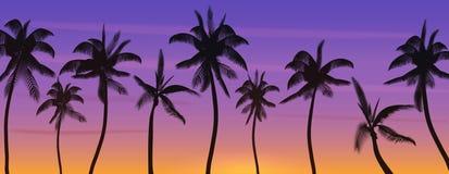 Silueta de los árboles de coco de la palma en la puesta del sol o la salida del sol Ejemplo realista del vector de la bandera Par stock de ilustración