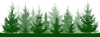 Silueta de los abetos del bosque Árbol de navidad stock de ilustración