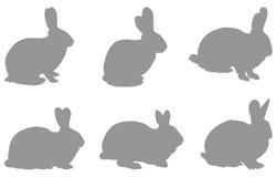 Silueta de los conejos Foto de archivo libre de regalías