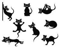 Silueta de los gatos Fotos de archivo