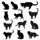Silueta de los gatos Foto de archivo