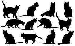 Silueta de los gatos del vector Foto de archivo