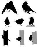 Silueta de los pájaros stock de ilustración
