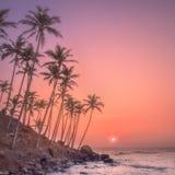 Silueta de palmeras y de la orilla durante puesta del sol imagenes de archivo