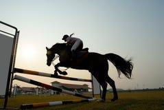 Silueta de un caballo Imagen de archivo libre de regalías
