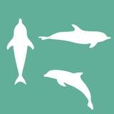 Silueta de un delfín Imágenes de archivo libres de regalías