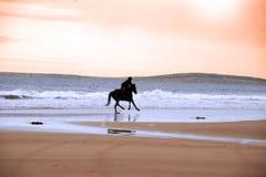 Silueta de un galope del caballo y del jinete Imagenes de archivo