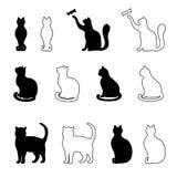 Silueta de un gato negro Foto de archivo libre de regalías