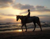 Silueta de un muchacho joven que monta un caballo en la puesta del sol en una playa arenosa debajo de un cielo caliente nublado imagen de archivo libre de regalías