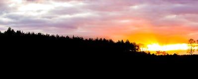 Silueta de un paisaje del brezo en el bosque en la puesta del sol, ocaso que da un resplandor colorido en el cielo y las nubes fotos de archivo libres de regalías
