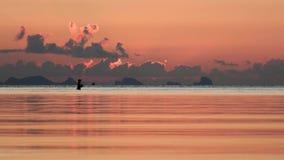 Silueta de un pescador solo en el tiempo de la puesta del sol almacen de video