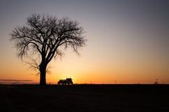 Silueta de un árbol y semi camión en la puesta del sol Fotografía de archivo