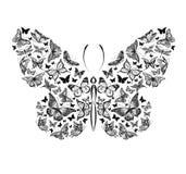 Silueta de una mariposa hecha de pequeñas mariposas, ejemplo gráfico Imagenes de archivo
