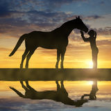Silueta de una muchacha que da un caballo del beso Foto de archivo libre de regalías