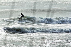 Silueta de una persona que practica surf en onda en la oscuridad Imágenes de archivo libres de regalías