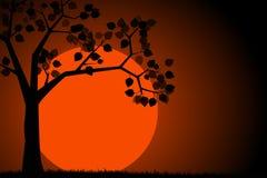 Silueta del árbol contra el cielo nocturno y una Luna Llena Cielo nocturno con una Luna Llena y una silueta del árbol Ilustración libre illustration