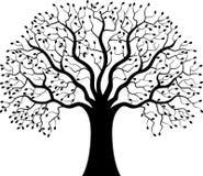 Silueta del árbol de la historieta Fotografía de archivo