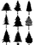 Silueta del árbol de navidad Imagen de archivo libre de regalías