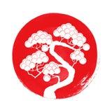 Silueta del árbol de pino Imágenes de archivo libres de regalías